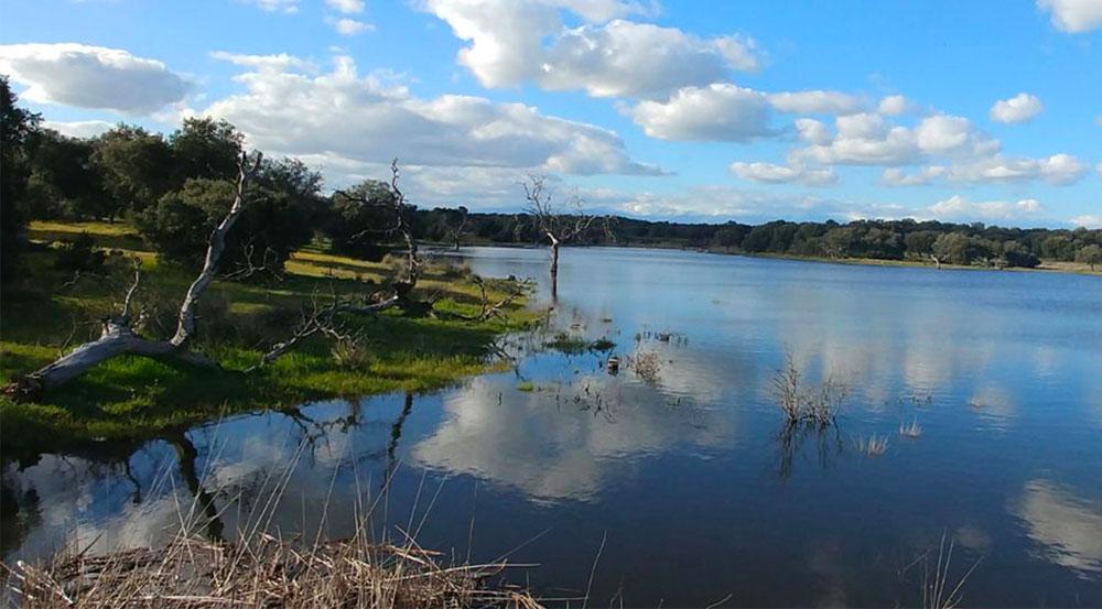 Uno de los lagos que conforman la dehesa